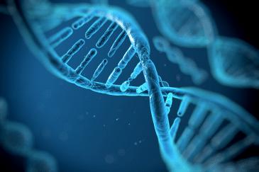 DNA画像